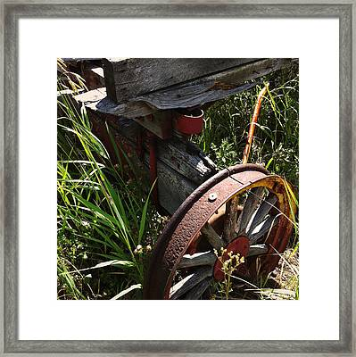 Framed Print featuring the photograph Tireless by Meghan at FireBonnet Art
