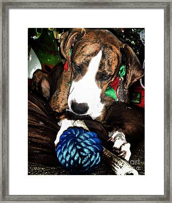 Framed Print featuring the photograph 'tis Better To Receive by Robert McCubbin