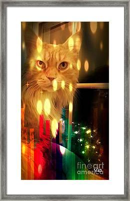 Tis The Season Framed Print by Judy Via-Wolff