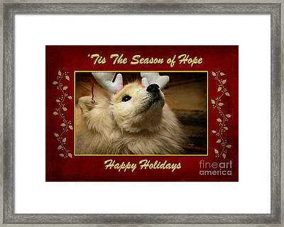 'tis The Season Of Hope Happy Holidays Framed Print by Lois Bryan