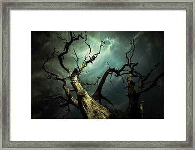 Titan Framed Print by Chris Fletcher