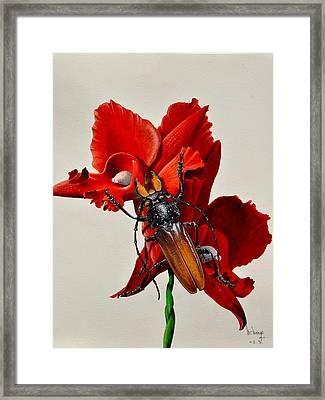 Titanus Framed Print by MICHAUX Michel