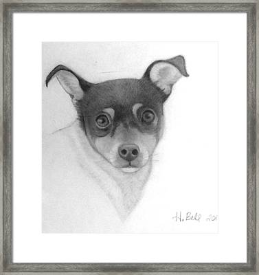 Tizzy Framed Print by Holly Bell