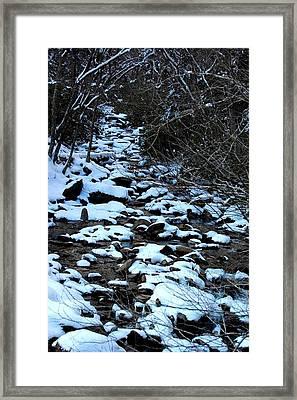 Tn Creek Framed Print by Joyce Brooks