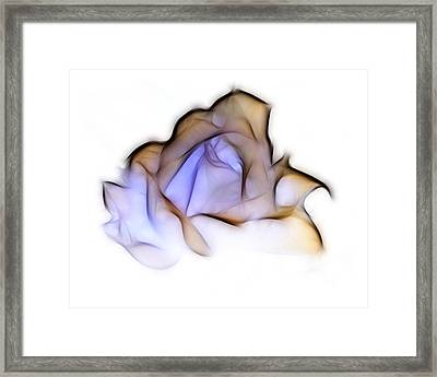 To A Rose Framed Print