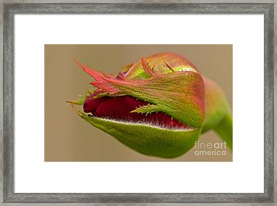 To Be Continued  Framed Print