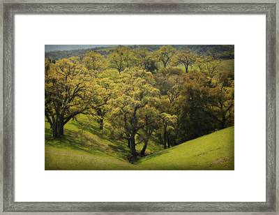 To Comfort You Framed Print by Laurie Search