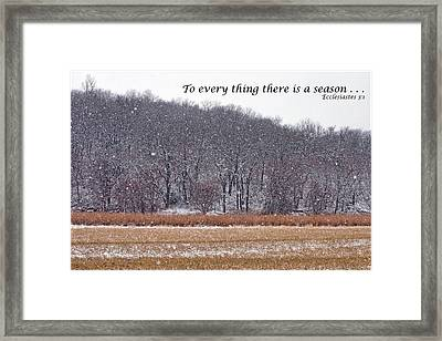 To Every Thing There Is A Season Framed Print by Nikolyn McDonald