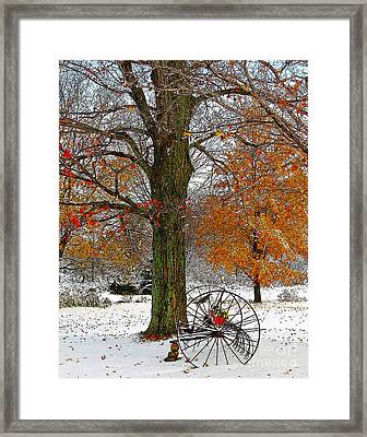 To Everything There Is A Season... Framed Print by Diane E Berry