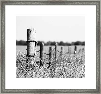 To Find My Bird B Framed Print by Jerry Cordeiro