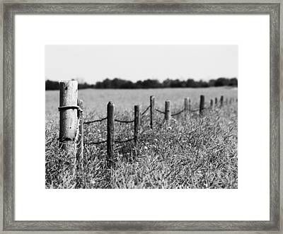 To Find My Bird Framed Print by Jerry Cordeiro