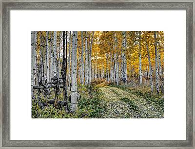 To Grandmother's House Framed Print by George Buxbaum