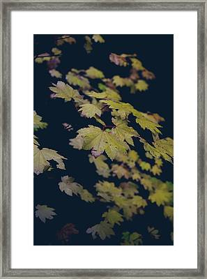 To Have You Near Framed Print