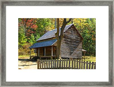 To Live Out Loud Framed Print by B Wayne Mullins