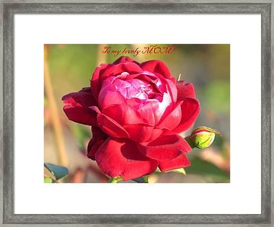 To My Lovely Mom Framed Print