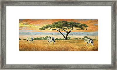 To Other Pastures Framed Print by Lucie Bilodeau