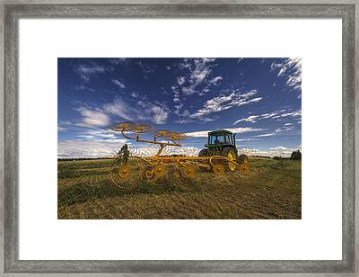 To Rake Or Not To Rake Framed Print