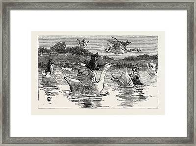 To Show Them His Poultry, He Turned Them All Loose, When Framed Print