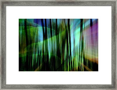 To The Future Framed Print by Shirley Sirois
