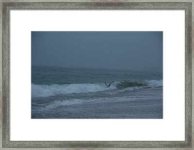 Framed Print featuring the photograph To The Galley by Neal Eslinger