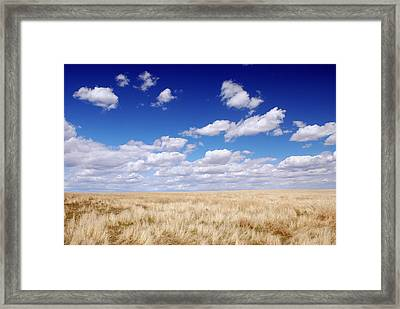 To The Horizon Framed Print by Kjirsten Collier