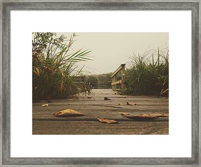 Framed Print featuring the photograph To The Pier by Nikki McInnes