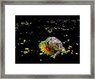 Toad In A Lions Den Framed Print