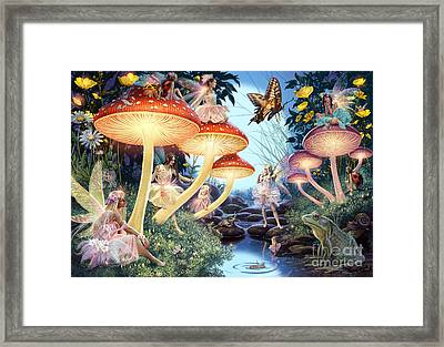 Toadstool Brook Framed Print by Steve Read
