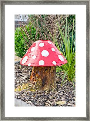 Toadstool Framed Print by Tom Gowanlock