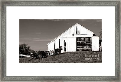 Tobaccows Framed Print by Olivier Le Queinec