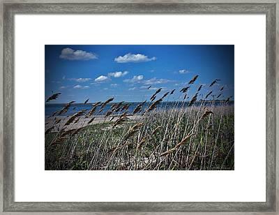 Tobay Beach Li Framed Print