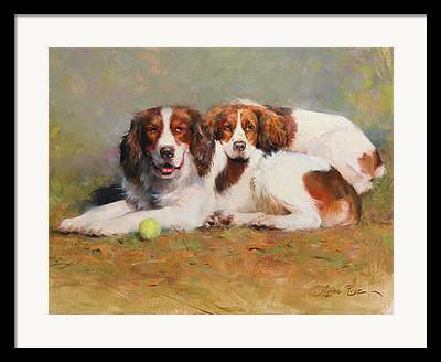 Dog With Tennis Ball Framed Prints