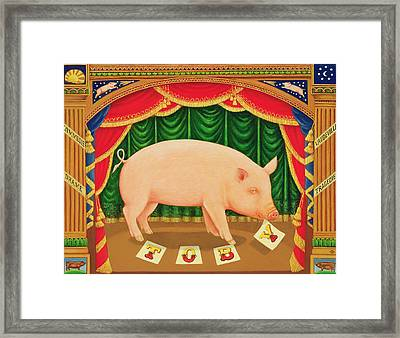 Toby The Learned Pig Framed Print by Frances Broomfield