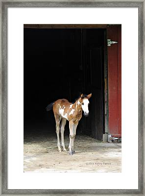 Framed Print featuring the photograph Toccoa At The Barn by Kenny Francis