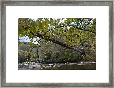 Toccoa River Swinging Bridge Framed Print