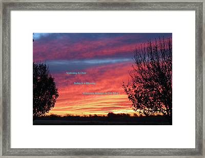 Today Is Best Framed Print by David  Norman