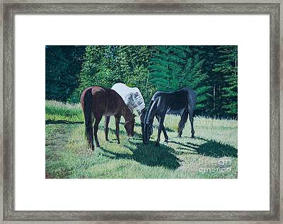 Together In Harmony. Framed Print