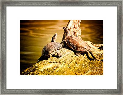 Together We Framed Print by Venura Herath