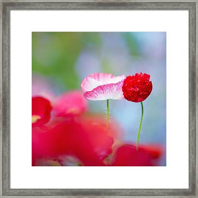 Togetherness II Framed Print by Sarah-fiona  Helme