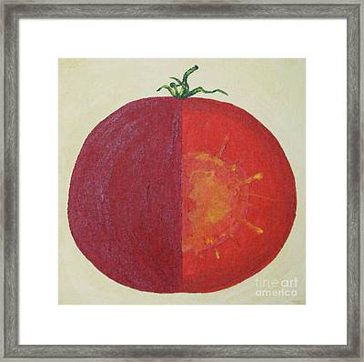 Tomato In Two Reds Acrylic On Canvas Board By Dana Carroll Framed Print