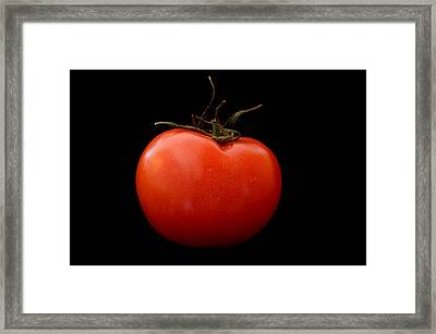 Tomato On Black Framed Print by Jeremy Voisey