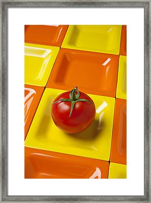 Tomato On Square Plate Framed Print by Garry Gay