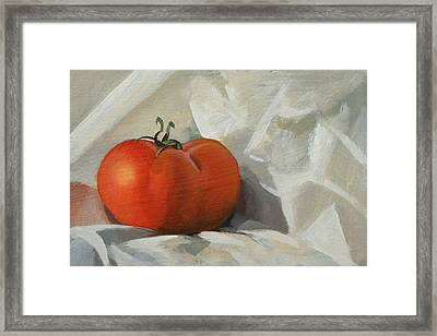 Tomato Framed Print by Peter Orrock