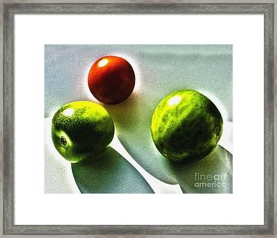 Tomato Phases Framed Print by Kim Lessel