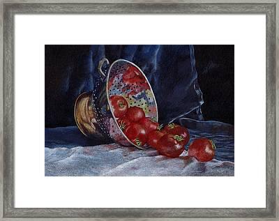 Tomato Soup For Tea Framed Print by Liz  Lamb