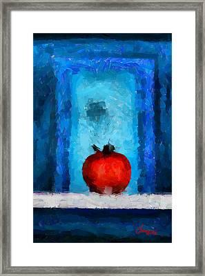 Tomato Tnm Framed Print by Vincent DiNovici