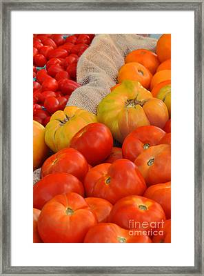 Tomato Variations By Nj Framed Print by Regina Geoghan