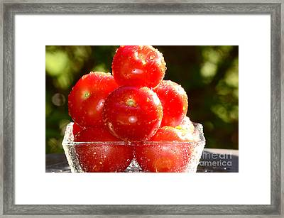 Tomatoes 2 Framed Print by Sabine Jacobs