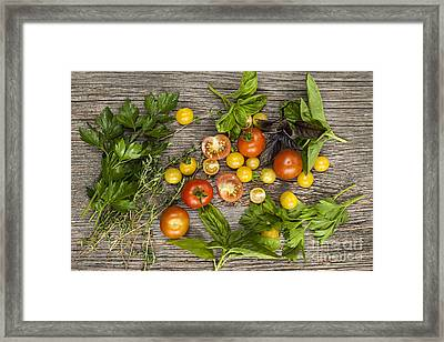 Tomatoes And Herbs Framed Print by Elena Elisseeva