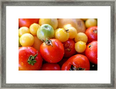 Tomatoes Framed Print by Diana Shay Diehl